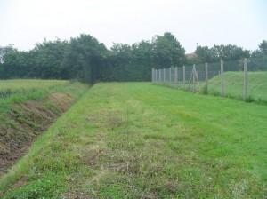 Photo avant plantation