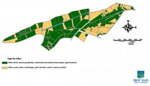 Une carte des surfaces boisées
