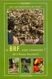 """Couverture """"Le BRF, Vous connaissez ?"""""""