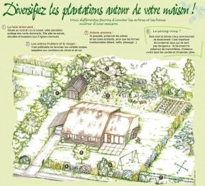 Le dessin d'un jardin