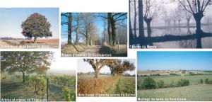 Des exemples variés de Paysages en Poitou-Charentes