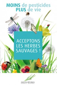 Visuel_Acceptons_les_herbes_sauvages