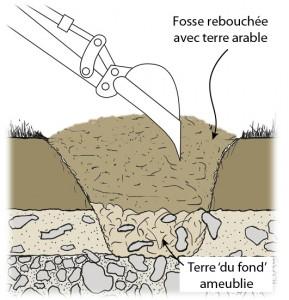 Dessin schématique d'une fosse de plantation préparée au godet