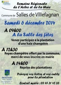 affiche_plantation_salles de Villefange