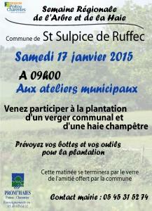 affiche_plantation_st sulpice de ruffec