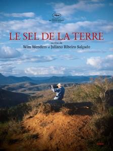 sel_terre