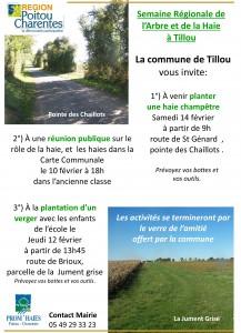 Affiche plantations et réunion-1