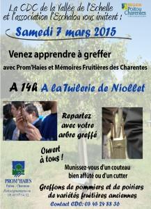 Greffage - Tuilerie de Niollet