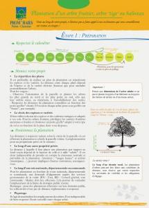 plantation_arbre.indd