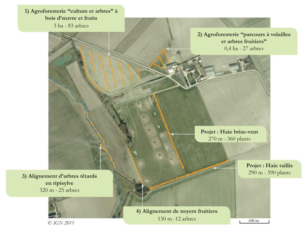 Plan plantations