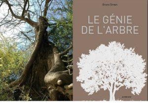 _genie___arbre___image_._jpg_