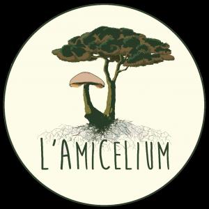 Logo L'Amicelium