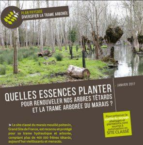plaquette_Marais_plantations